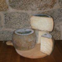Fiore sardo Dop formaggio di Gavoi