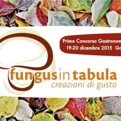 fungus in tabula